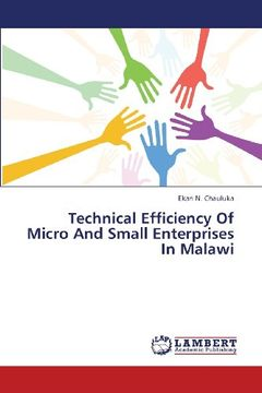portada Technical Efficiency of Micro and Small Enterprises in Malawi