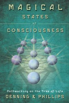 portada magical states of consciousness